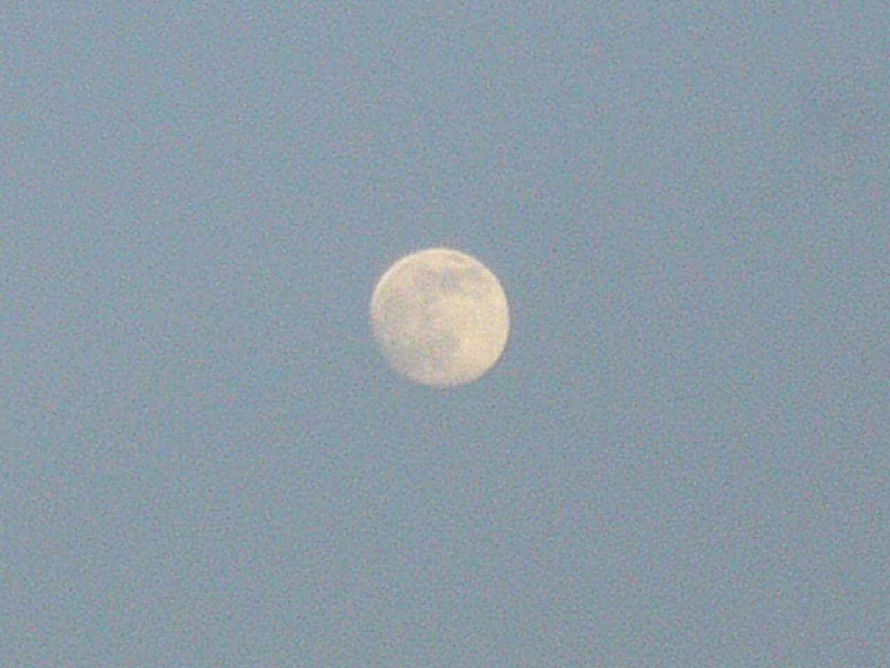 今日の夕方の月