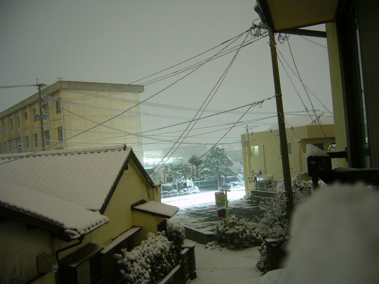 今晩の雪。3cmくらい積もってます。