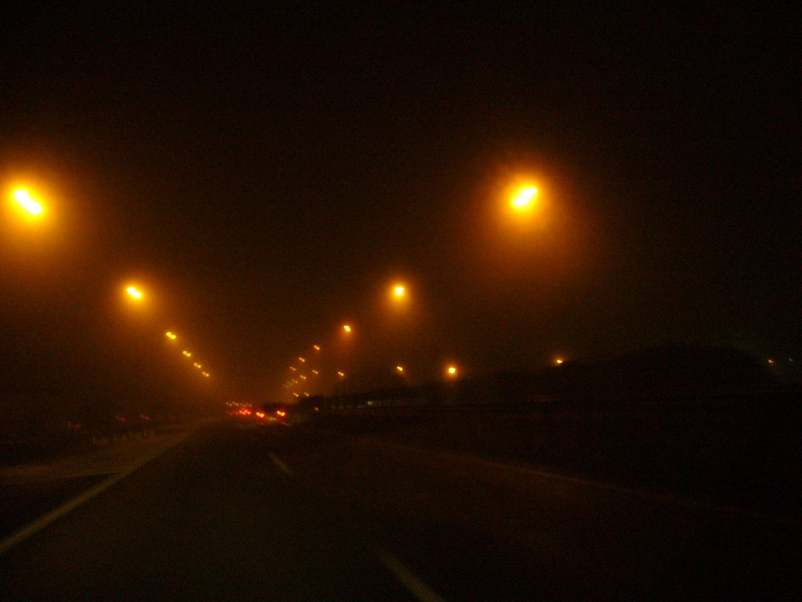 某日の某所の霧の道